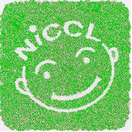 NiCCL13-iloveimg-converted